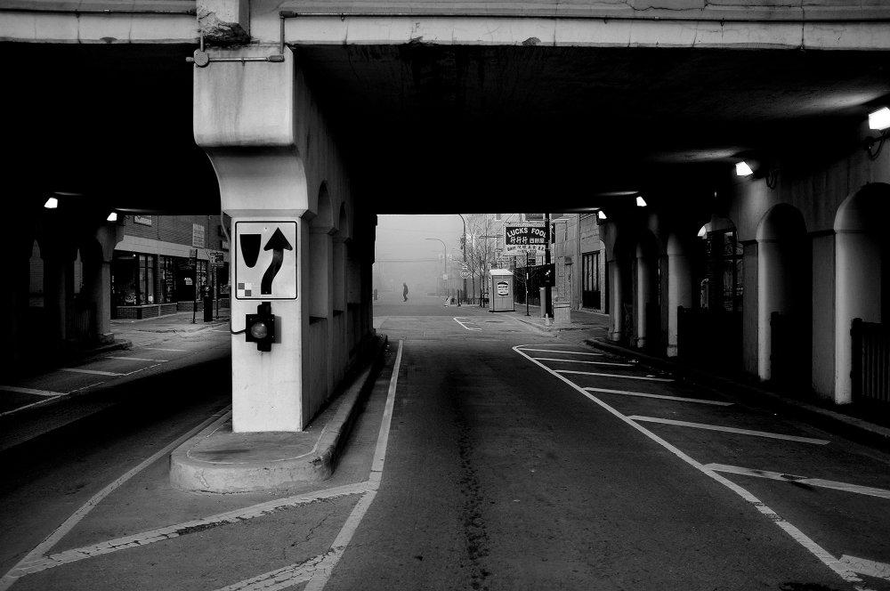 fog, photo by andrew steiner